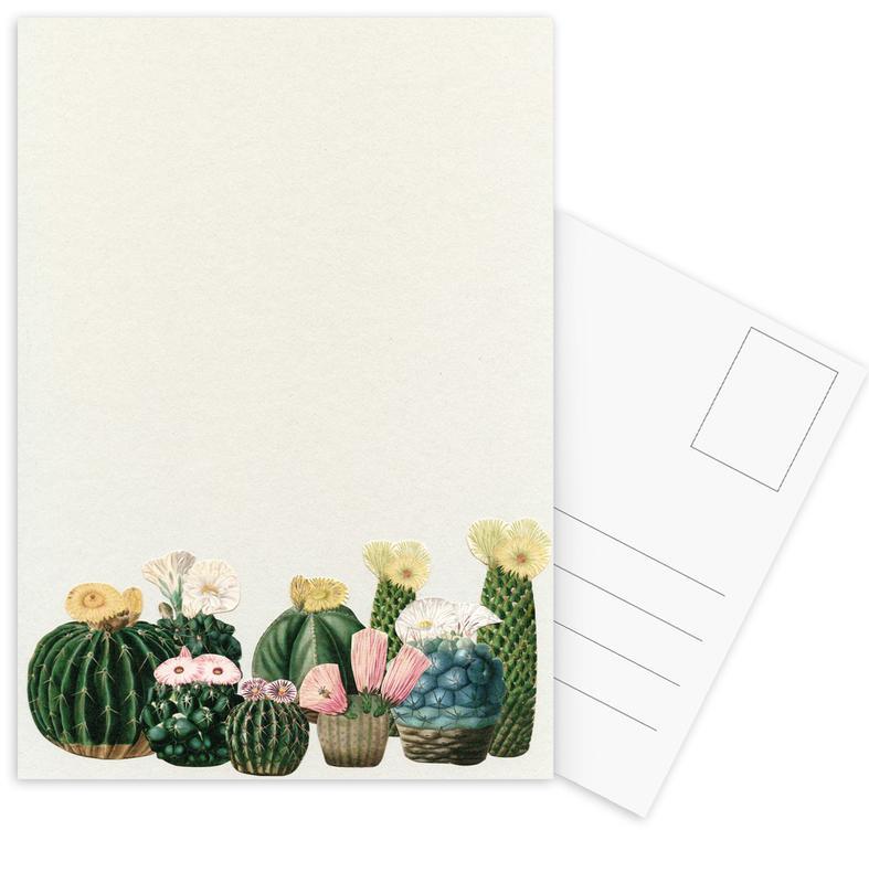 Cactus Garden Postcard Set