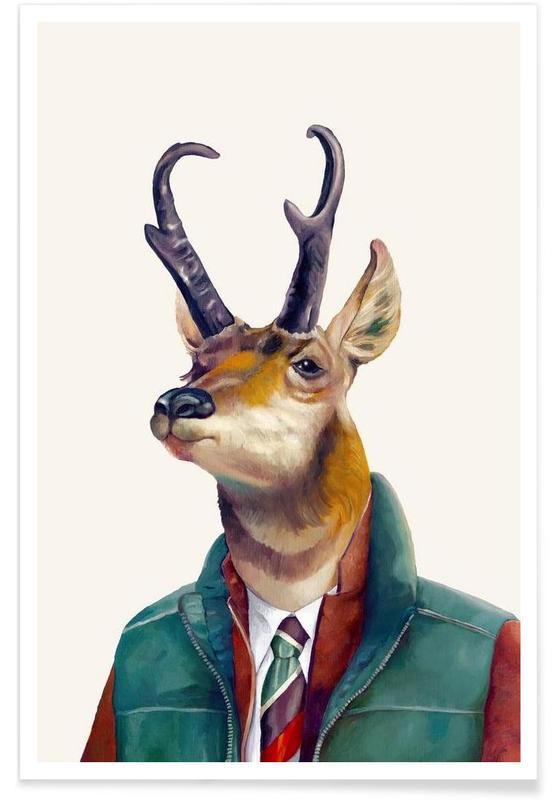 Pronghorn Poster