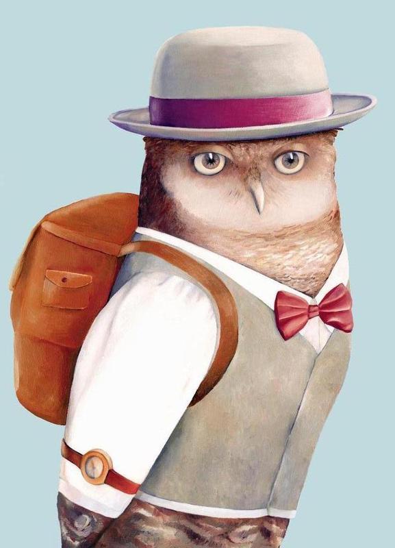 Owl canvas doek