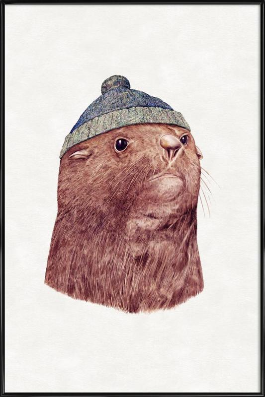 Fur Seal Framed Poster