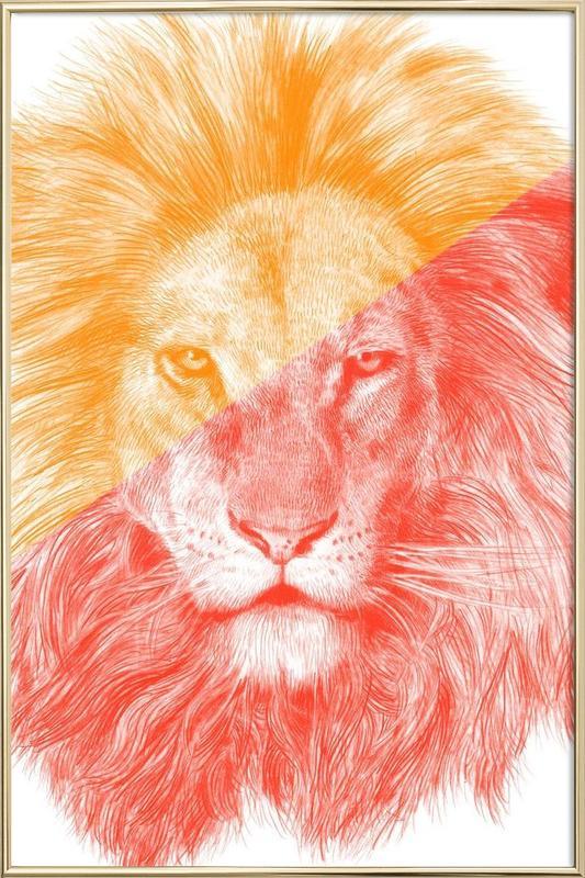 Safari Animals, Wild III Poster in Aluminium Frame