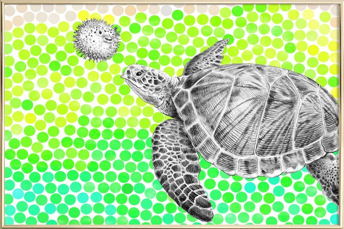 Turtle and Pufferfish -Poster im Alurahmen