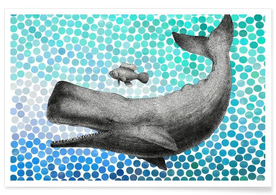 Whale and Fish Poster