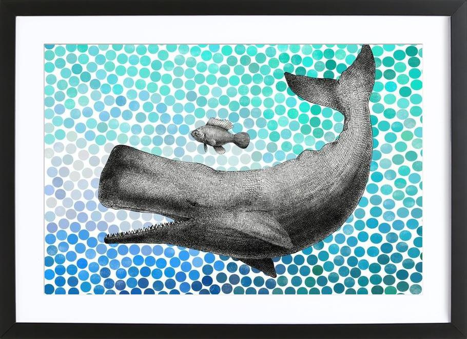 Whale and Fish Framed Print