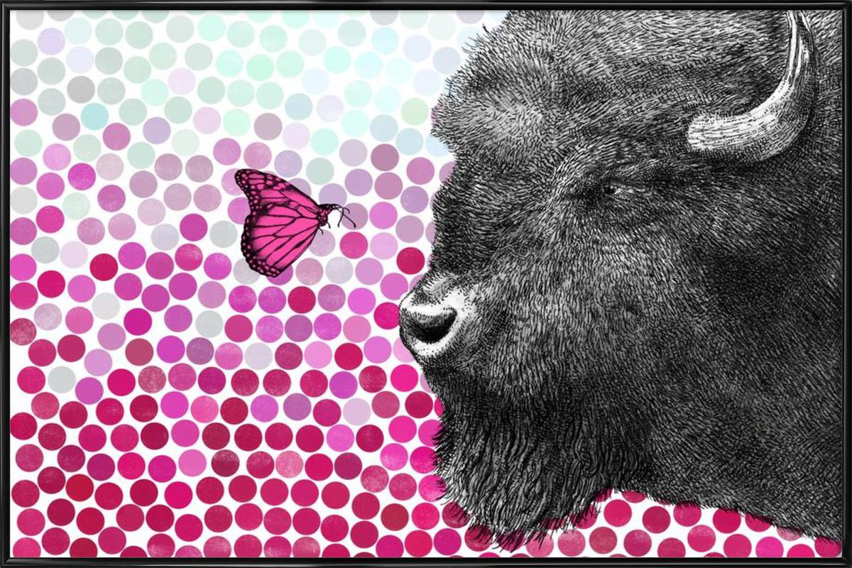 Bison and Butterfly Framed Poster