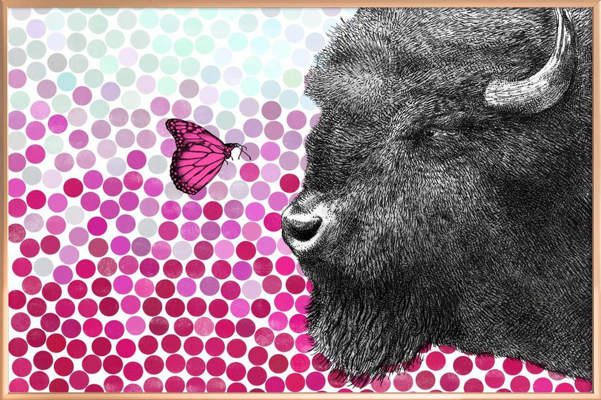 Bison and Butterfly Poster in Aluminium Frame