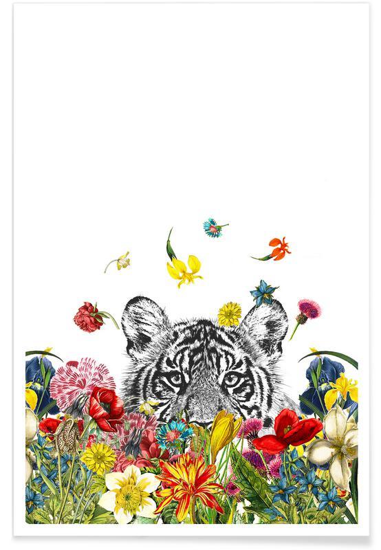 Tigres, Happy tiger affiche