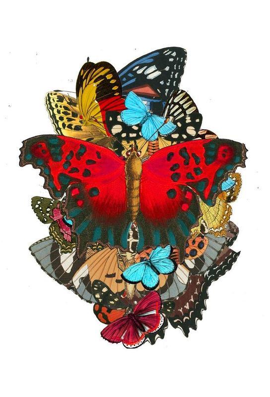 The colors of nature 1 -Acrylglasbild
