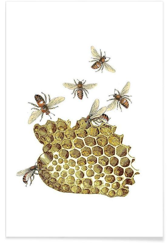 Bees and Honeycomb Poster