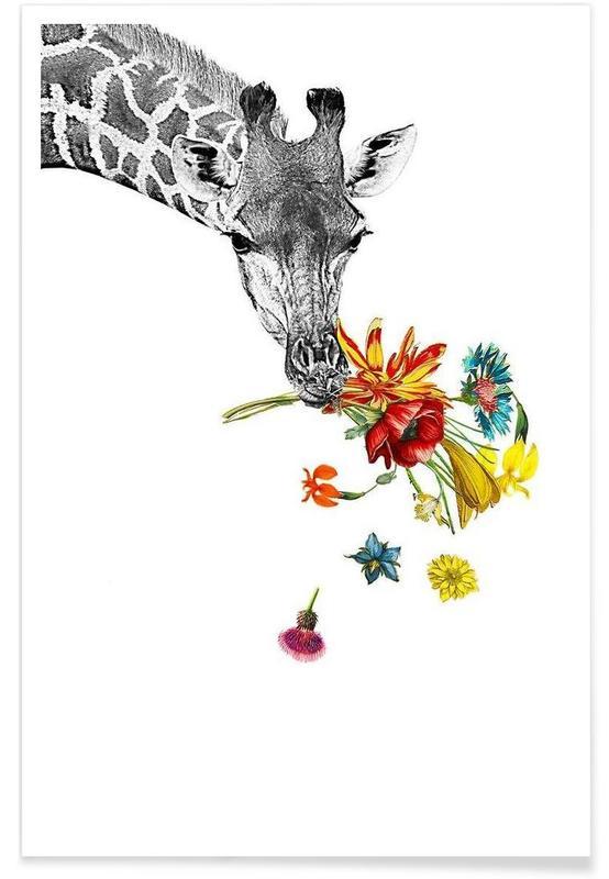 Girafes, Hay affiche