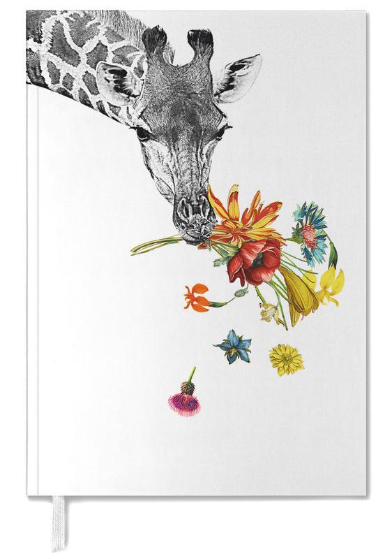 Girafes, Hay agenda