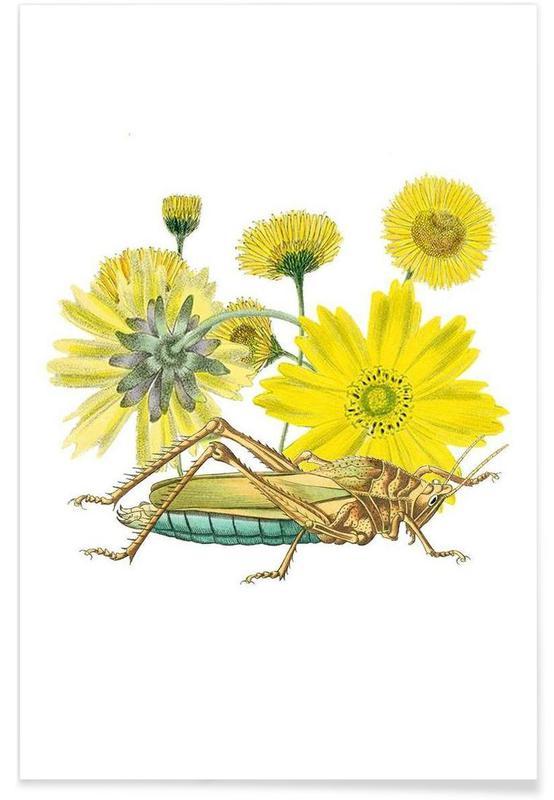 Sauterelles, Pissenlits, Yellow Flowers and Grasshopper affiche
