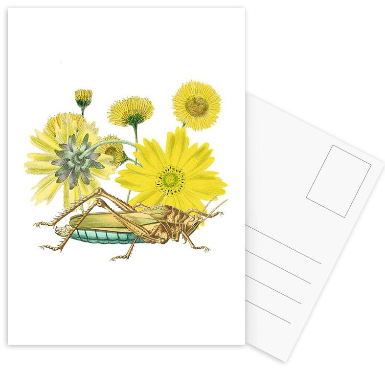 Yellow Flowers and Grasshopper -Postkartenset