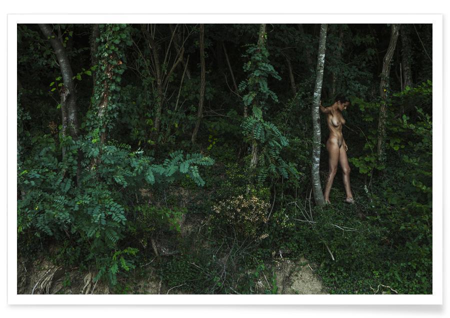 Forêts, Amazon affiche