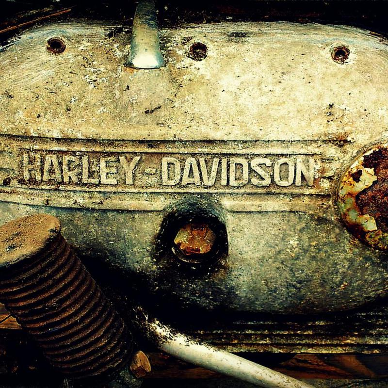 Harley -Alubild