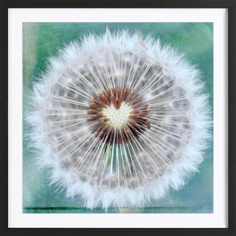 Dandy Heart Framed Print