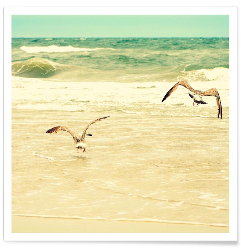 Måger, Strande, Karatekidpose Plakat