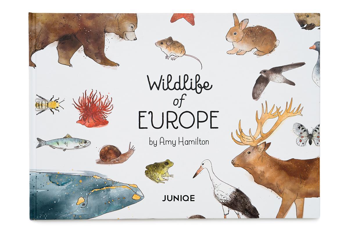 Wildlife of Europe Children's Book